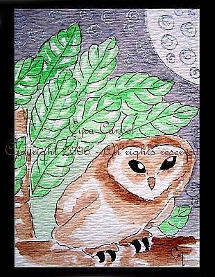 Art: Owl 1 (SOLD) by Artist Cyra R. Cancel