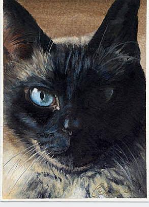 Art: Eyes of Bogart by Artist Caron Wiedrick