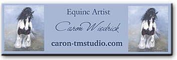 Caron Wiedrick-TMStudio
