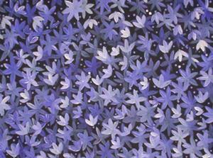 Detail Image for art Medicine Leaves (sold)