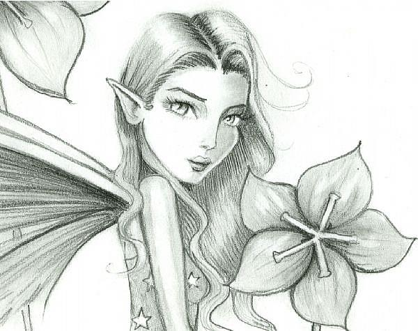 Pencil Drawing Of Fairies | New Calendar Template Site