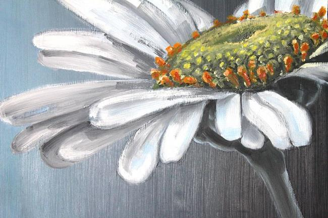 Art: Chamomile - oil 28x20 by Artist Luba Lubin