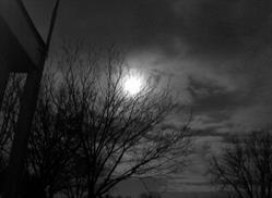 Art: Black and White Movie by Artist Sherry Key