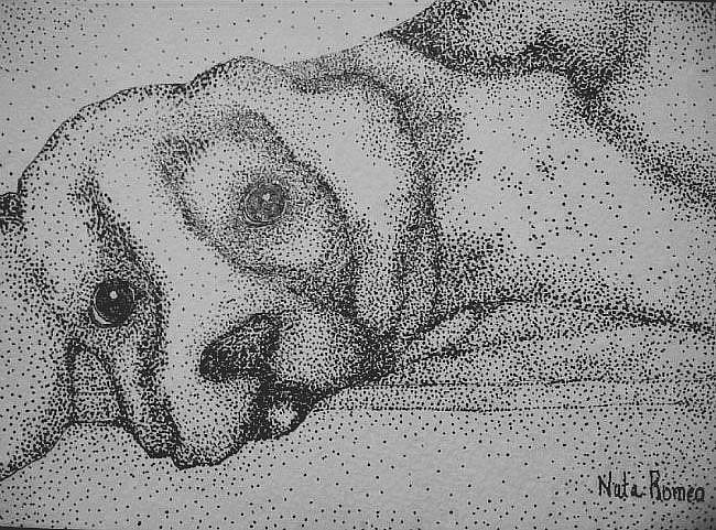 Art: POOCH by Artist Nata ArtistaDonna