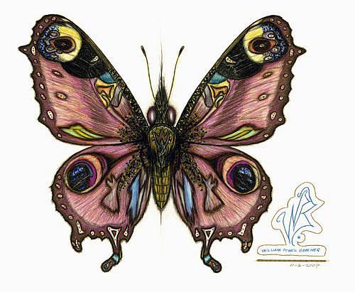 Art: butterfly7 by Artist William Powell Brukner