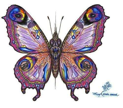 Art: butterfly5 by Artist William Powell Brukner