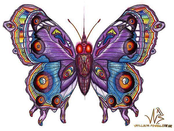 Art: butterfly8 by Artist William Powell Brukner