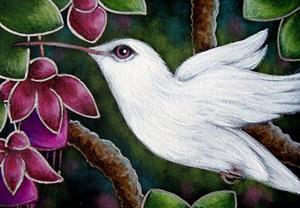 Detail Image for art ALBINO HUMMINGBIRD WITH FUSCHIA FLOWERS