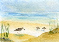 Art: Seashore ACEO watercolor by Artist Hannah Clements