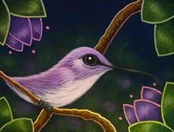 Art: TINY VIOLET COSTAS HUMMINGBIRD by Artist Cyra R. Cancel
