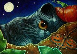 Art: BLACK PERSIAN KITTEN CAT WATCHING THE PUMPKIN BUTTERFLY by Artist Cyra R. Cancel