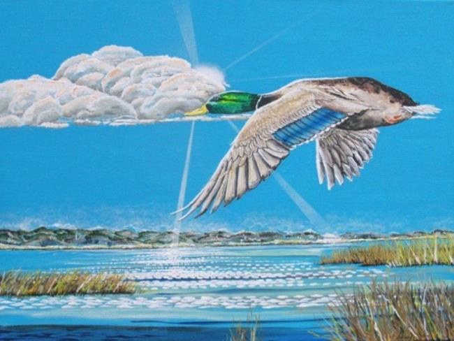 Art: Flying Mallard 2011   Copy by Artist Leonard G. Collins