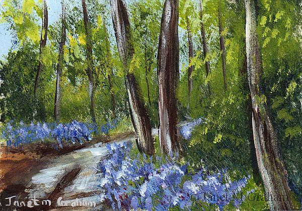 Art: Bluebell Trail ACEO by Artist Janet M Graham