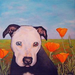 Art: Pibble in the Poppies by Artist Lindi Levison