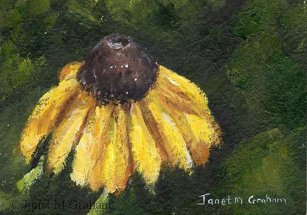Art: Yellow Daisy ACEO by Artist Janet M Graham