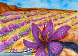 Art: Harvesting Saffron  (SOLD) by Artist Monique Morin Matson