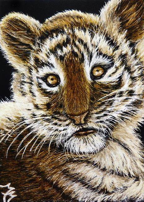 Art: Baby Tiger Face  (SOLD) by Artist Monique Morin Matson