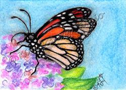 Art: Monarch on Lilacs by Artist Kim Loberg