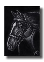 Art: Horse Head by Artist Monique Morin Matson
