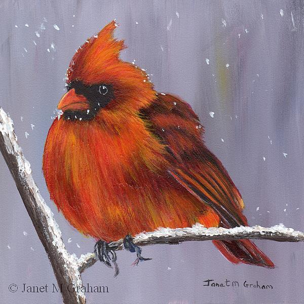 Art: Winter Cardinal by Artist Janet M Graham