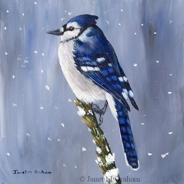 Art: Winter Blue Jay by Artist Janet M Graham
