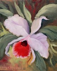 Art: Cattleya  Orchid by Artist Barbara Haviland