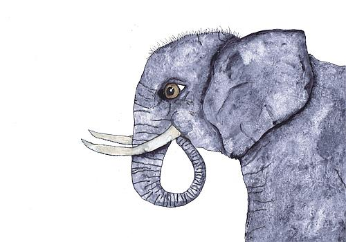 Art: ELEPHANT e110 by Artist Dawn Barker