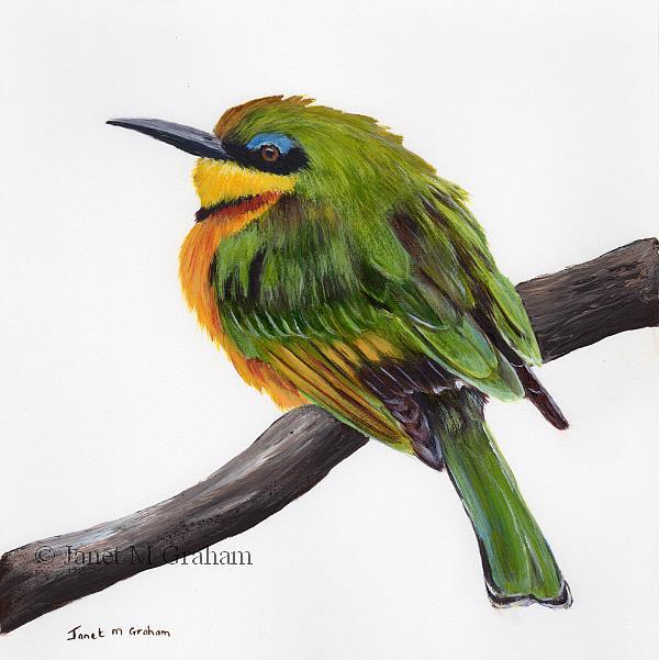 Art: Little Bee Eater by Artist Janet M Graham