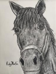 Art: Horse Portrait by Artist Ulrike 'Ricky' Martin