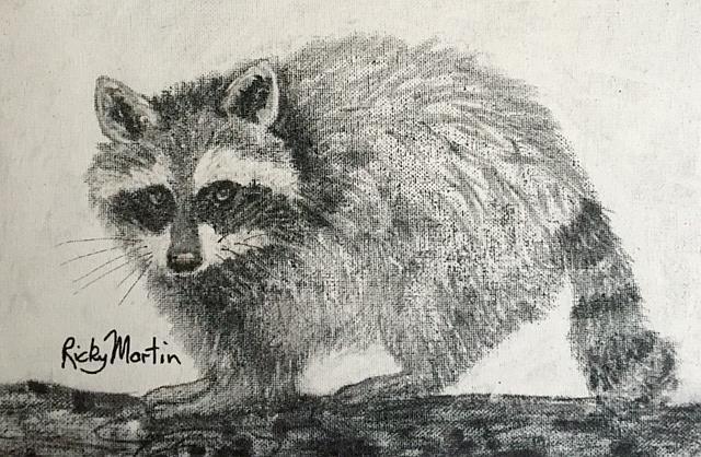 Art: raccoon by Artist Ulrike 'Ricky' Martin