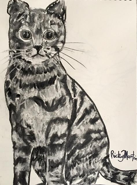 Art: Charcoal Sketch - Kitty by Artist Ulrike 'Ricky' Martin