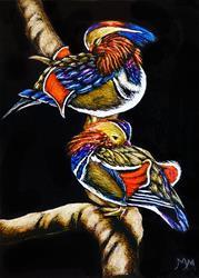 Art: Mandarin Ducks - SA106 (SOLD) by Artist Monique Morin Matson