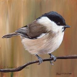 Art: Marsh Tit by Artist Janet M Graham