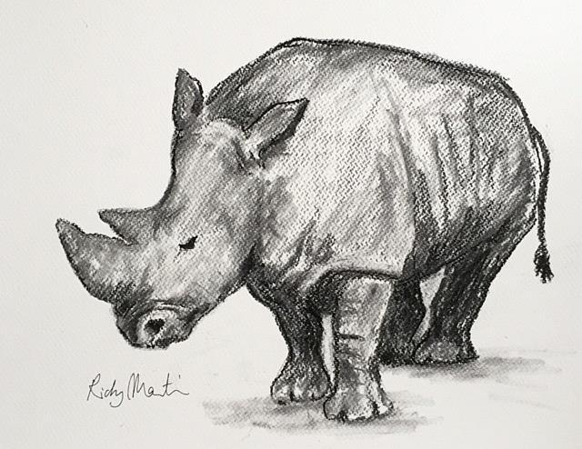 Art: Rhino Charcoal Sketch by Artist Ulrike 'Ricky' Martin
