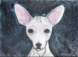 Art: Chihuahua 1 by Artist Melinda Dalke