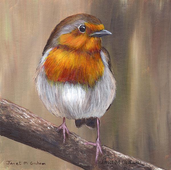Art: Robin No 11 by Artist Janet M Graham