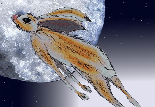 Art: NIGHT FLYING h3108 by Artist Dawn Barker