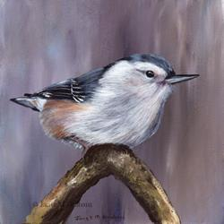 Art: White Breasted Nuthatch by Artist Janet M Graham