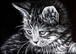 Art: Kitten - SA110  (SOLD) by Artist Monique Morin Matson