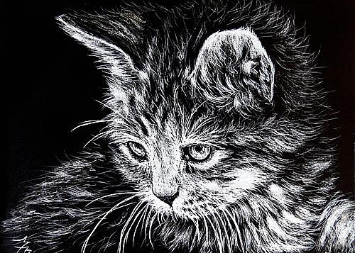 Art: Kitten - SA110  (SOLD) by Artist Monique Morin Matson