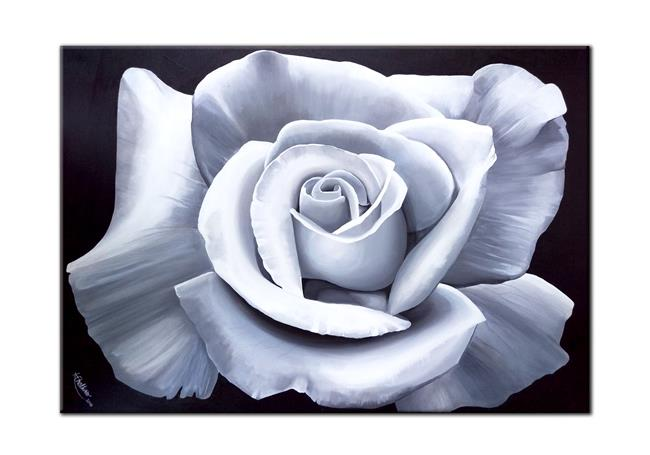 Art: WHITE ROSE by Artist Kate Challinor