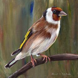 Art: European Goldfinch by Artist Janet M Graham