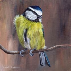 Art: Blue Tit No 4 by Artist Janet M Graham
