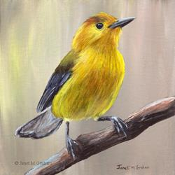 Art: Prothonotary Warbler by Artist Janet M Graham