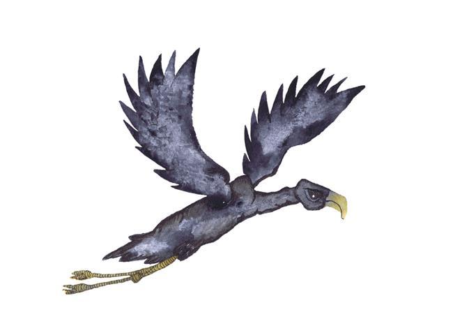 Art: BIG BIRD b112 by Artist Dawn Barker