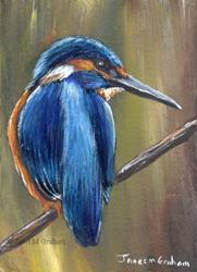 Art: Kingfisher ACEO by Artist Janet M Graham
