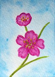 Art: Pink Blossoms - MM06 by Artist Monique Morin Matson