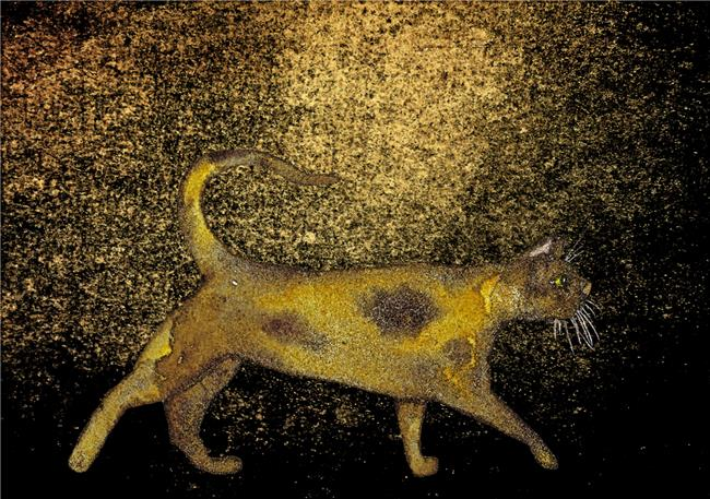 Art: STALKING CAT c410 by Artist Dawn Barker
