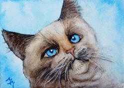 Art: Cat Portrait  (SOLD) by Artist Monique Morin Matson