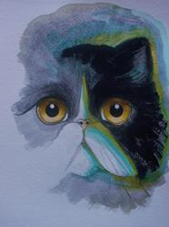 Art: TUXEDO PERSIAN CAT WATERCOLOR 9 X 12 by Artist Cyra R. Cancel